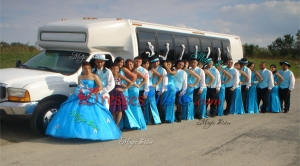 Beautiful Really Puffy Applique and Bubble Baby Blue Quinceanera Package