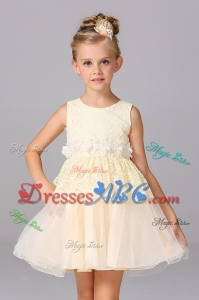 Princess Scoop Lace Short Champagne Flower Girl Dress for Wedding