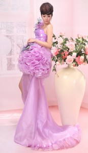 Bad Soden Germany Hand Made Flower One Shoulder High Slit Brush Train Lavender Organza Prom E