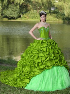 Appliques And Pick-ups Spring Green Brush Train Exquisite Style Quinceanera Dress