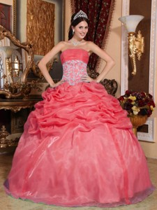 Coral Red Ball Gown Strapless Floor-length Organza Appliques Quinceanera Dress
