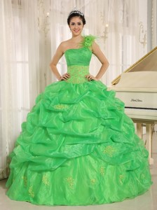 Hot In Sucre City Spring Green One Shoulder Quinceaners Dress With Embroidery And Pick-ups Deco
