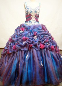 Exquisite Ball Gown Strap Floor-length Organza Quinceanera Dress