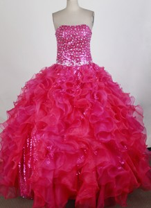 Exquisite Ball Gown Strapless Floor-length Quinceanera Dress