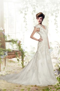 Elegant A Line V Neck Appliques Wedding Dress With Chapel Train