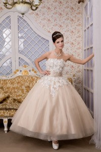 Beautiful Strapless Ankle-length Tulle Appliques Wedding Dress