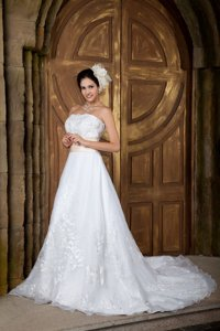Beautiful Strapless Court Train Organza Embroidery Wedding Dress