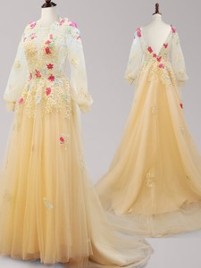 See Through Scoop Long Sleeves Applique Prom Dress with Brush Train