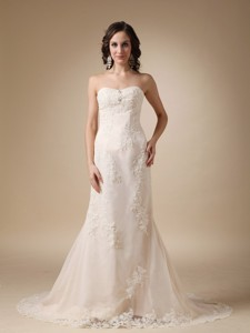 Wonderful Column Sweetheart Court Train Taffeta and Lace Wedding Dress