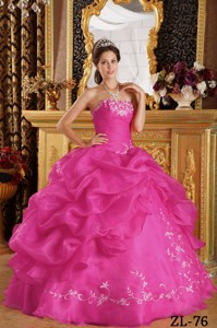 Hot Pink Ball Gown Strapless Floor-length Embroidery Organza Quinceanera Dress