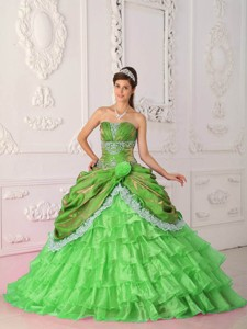 Spring Green Ball Gown Strapless Floor-length Organza and Taffeta Lace and Appliques Quinceanera Dre
