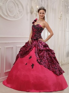 Hot Pink Ball Gown One Shoulder Floor-length Zebra or Leopard Appliques Quinceanera Dress