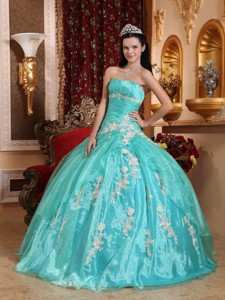 Beautiful Ball Gown Strapless Floor-length Organza Appliques Quinceanera Dress