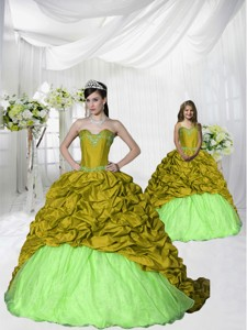 Customize Appliques and Pick-ups Green Princesita Dress with Brush Train
