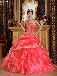 Watermelon Ball Gown Strapless Floor-length Organza Quinceanera Dress