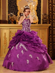 Fuchsia Ball Gown Strapless Floor-length Organza Appliques Quinceanera Dress