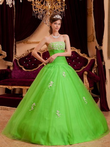 Spring Green Princess Strapless Floor-length Appliques Tulle Quinceanera Dress