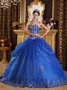 Blue Ball Gown Sweetheart Floor-length Appliques Organza Quinceanera Dress