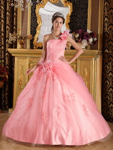 Watermelon Ball Gown One Shoulder Floor-length Appliques Tulle Quinceanera Dress
