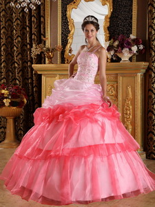 Romantic Ball Gown One Shoulder Floor-length Organza Appliques with Beading Quinceanera Dress