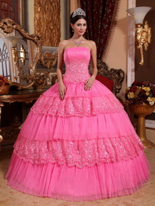 Pink Ball Gown Strapless Floor-length Organza Lace Appliques Quinceanera Dress