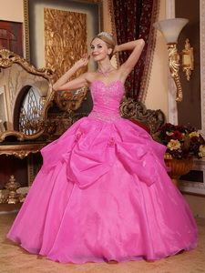 Rose Pink Ball Gown Sweetheart Floor-length Taffeta and Organza Appliques Quinceanera Dress