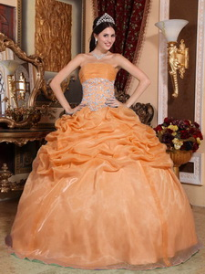 Orange Ball Gown Strapless Floor-length Organza Appliques Quinceanera Dress