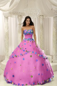Hot Pink Ball Gown Quninceaera Gown For Custom Made Appliques Decorate Bodice