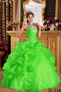 Spring Green Ball Gown Strapless Floor-length Embroidery Organza Quinceanera Dress