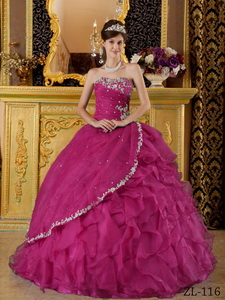 Fuchsia Ball Gown Strapless Floor-length Organza Appliques Bule Quinceanera Dress