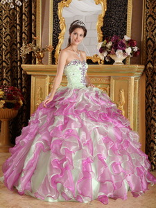 Fuchsia and Apple Green Ball Gown Sweetheart Floor-length Organza Appliques Quinceanera Dress