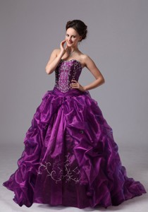 Embroider and Pick-ups Sweep Train For Eggplant Purple Quinceanera Dress For Custom Made In Griffin