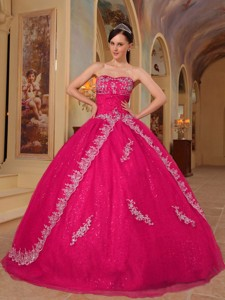 Hot Pink Ball Gown Sweetheart Floor-length Organza Embroidery and Beading Quinceanera Dress