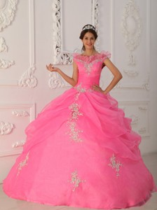 Pink Ball Gown V-neck Floor-length Taffeta and Organza Appliques with Beading Quinceanera Dress