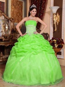 Spring Green Ball Gown Strapless Floor-length Organza Appliques Quinceanera Dress