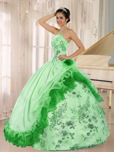 Applqiues Quinceanera Dress