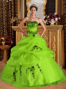Yellow Green Ball Gown Sweetheart Floor-length Satin and Organza Embroidery Quinceanera Dress