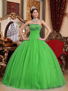 Green Ball Gown Strapless Floor-length Tulle Embroidery with Beading Quinceanera Dress