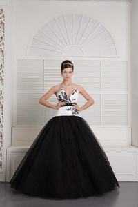 Black and White Ball Gown V-neck Floor-length Tulle Embroidery Quinceanera Dress