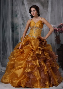 Brown Ball Gown Straps Floor-length Organza Beading Quinceanera Dress