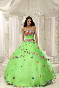 Spring Green Ball Gown Quninceaera Gown For Custom Made Appliques Decorate Bodice