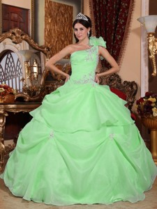 Green Ball Gown One Shoulder Floor-length Organza Appliques Quinceanera Dress
