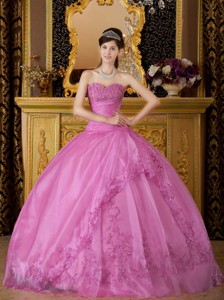 Rose Pink Ball Gown Sweetheart Floor-length Appliques Organza Quinceanera Dress