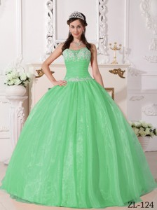 Apple Green Ball Gown Strapless Floor-length Taffeta and Organza Appliques Quinceanera Dress