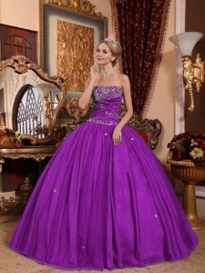Eggplant Purple Ball Gown Strapless Floor-length Taffeta and Tulle Appliques Quinceanera Dress