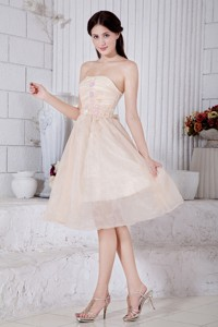 Champagne Pricess Strapless Short Dama Homecoming Dress Organza Appliques Knee-length