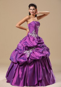 Ann Arbor Appliques Decorate Bodice Strapless Pick-ups Purple Floor-length Prom Pageant Dress