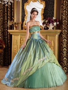 Olive Green Ball Gown Strapless Floor-length Taffeta and Organza Appliques Quinceanera Dress
