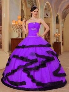 Purple Ball Gown Strapless Floor-length Organza Appliques Quinceanera Dress
