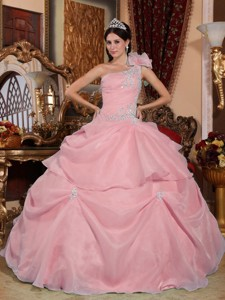 Pink Ball Gown One Shoulder Floor-length Organza Appliques Quinceanera Dress